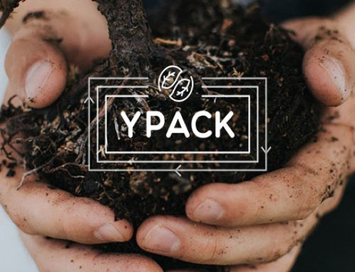 First YPACK newsletter is out